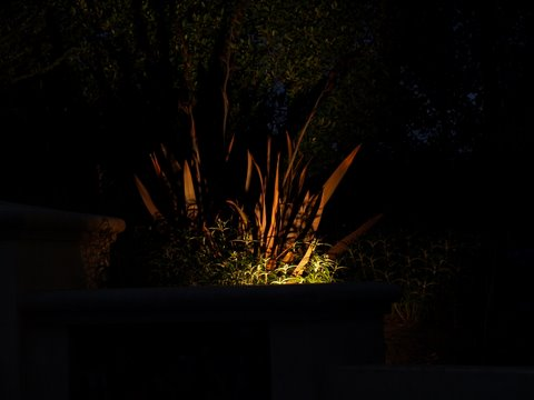 Landscape Lighting Simi Valley Dramatic Lighting