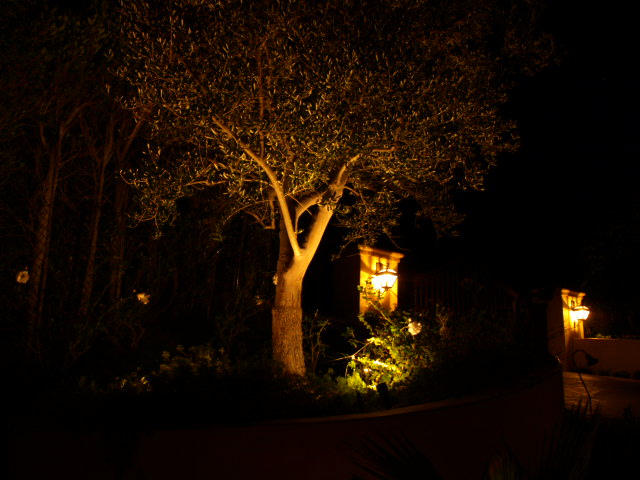 Landscape Lighting Simi Valley